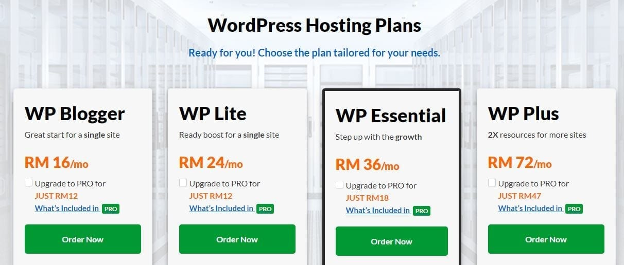 wordpress professional business website hosting
